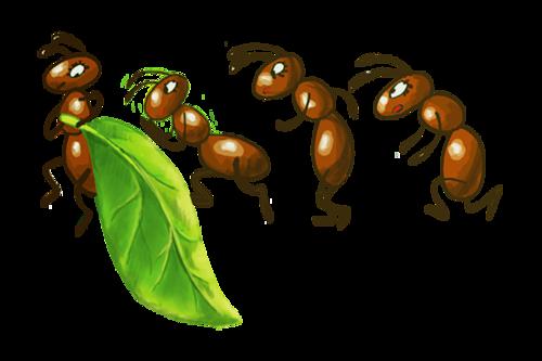 Image fourmi rigolote - Dessin d une fourmi ...
