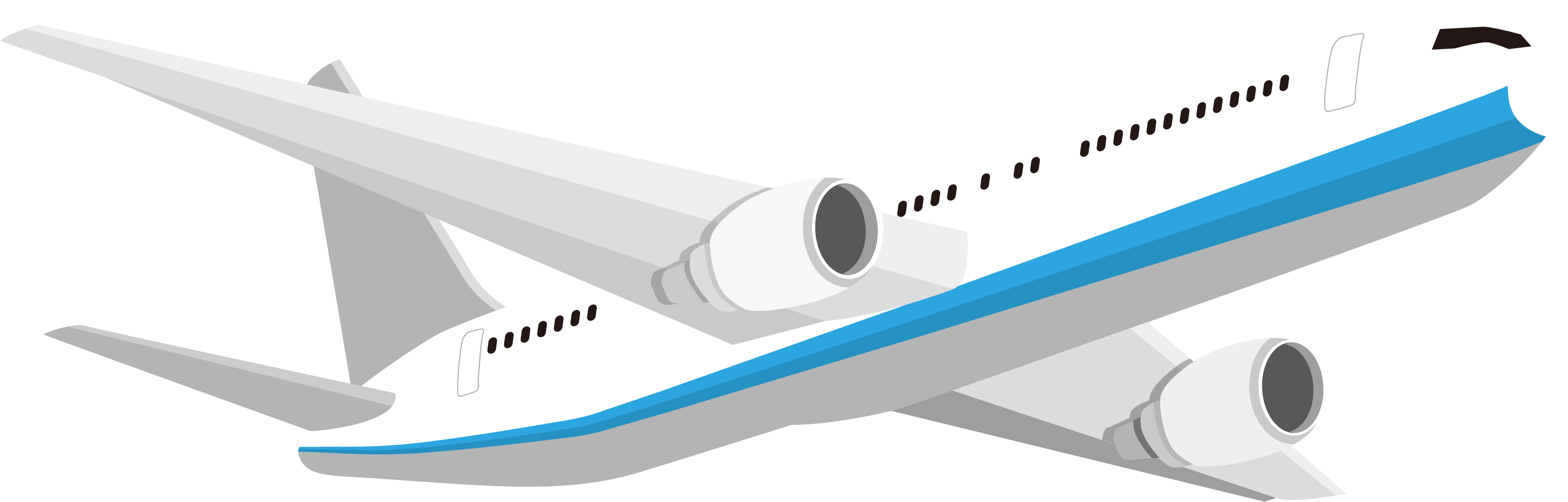 Passenger Air Travel